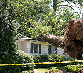 Wind Damage Repair Company in Warren Michigan - Emergency Services - storm2-new